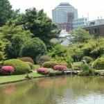 文京区小石川植物園