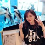 07kkuma_penguin
