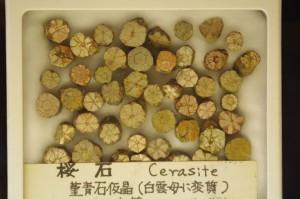 石ふしぎ博物館