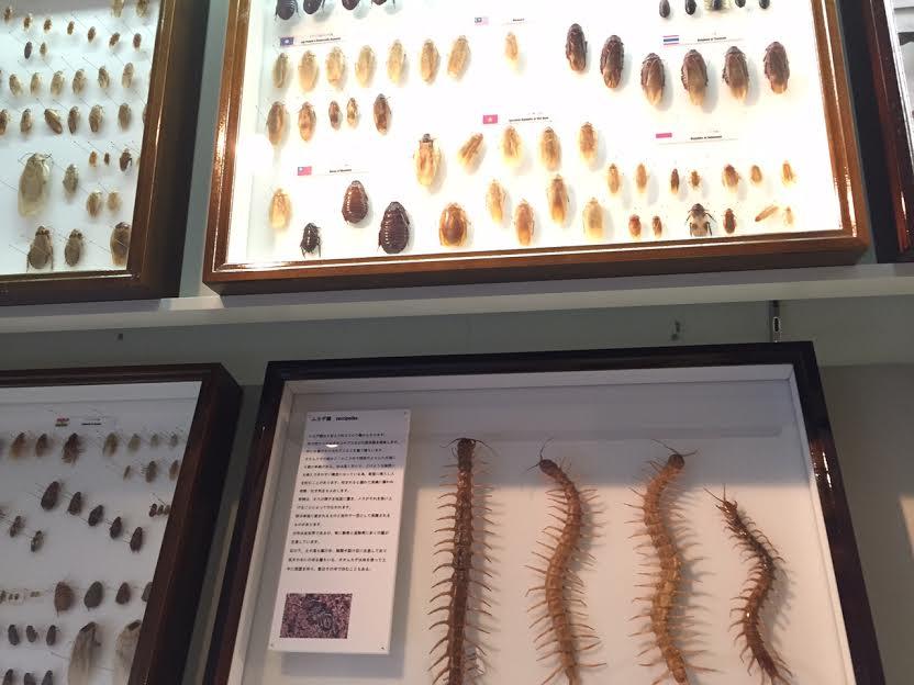 害虫防除博識館