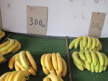 佐藤バナナ