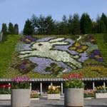 宇治市植物園