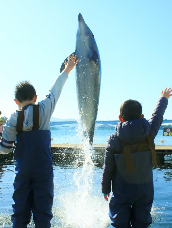 わくわく海中水族館シードーナツ