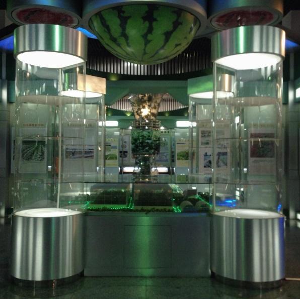 中国スイカ博物館