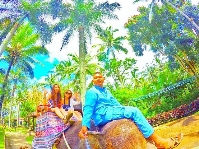 エレファント サファリパーク タロ ウブド(Elephant Safari Park-Taro Ubud)