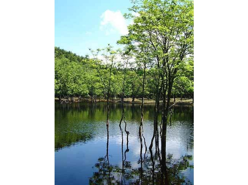 ポンホロ沼