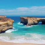 sheeplog_greatocean