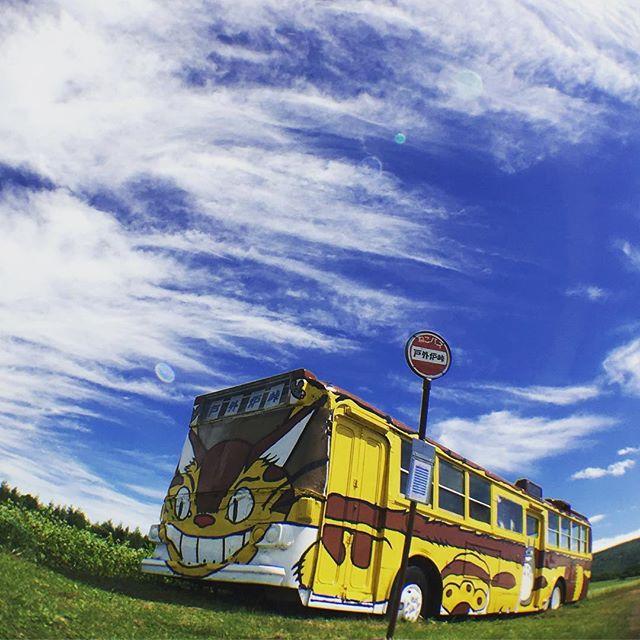 トトロ峠の猫バス
