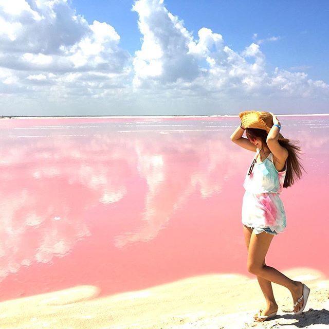 ピンクラグーン / Pink Lagoon