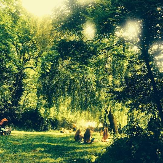 ハムステッド・ヒース / Hampstead Heath