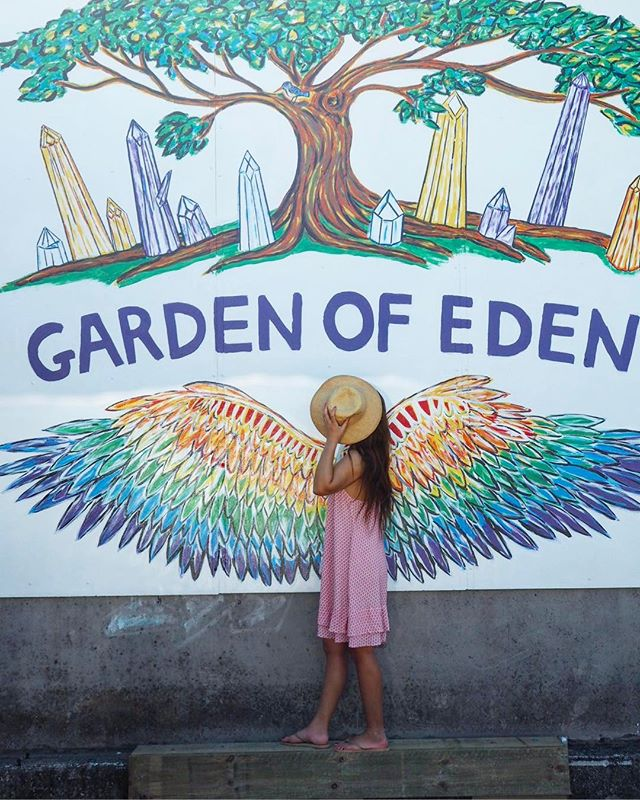 Garden of Eden Organic & Health Foods