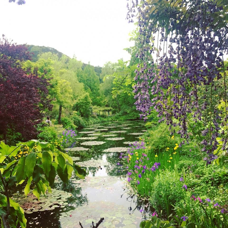 モネの庭 マルモッタン