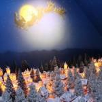 christmas-mori