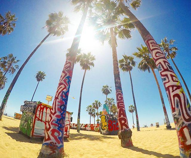 ベニスビーチ / Venice Beach