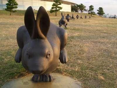 島根県立美術館 うさぎの彫刻