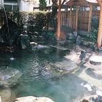 yunokawaonsen