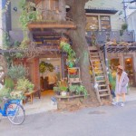 akari__trip_treecafe