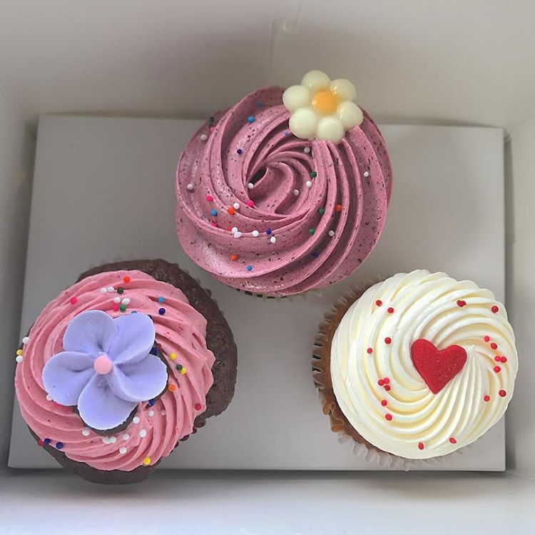YUM CUP CAKES