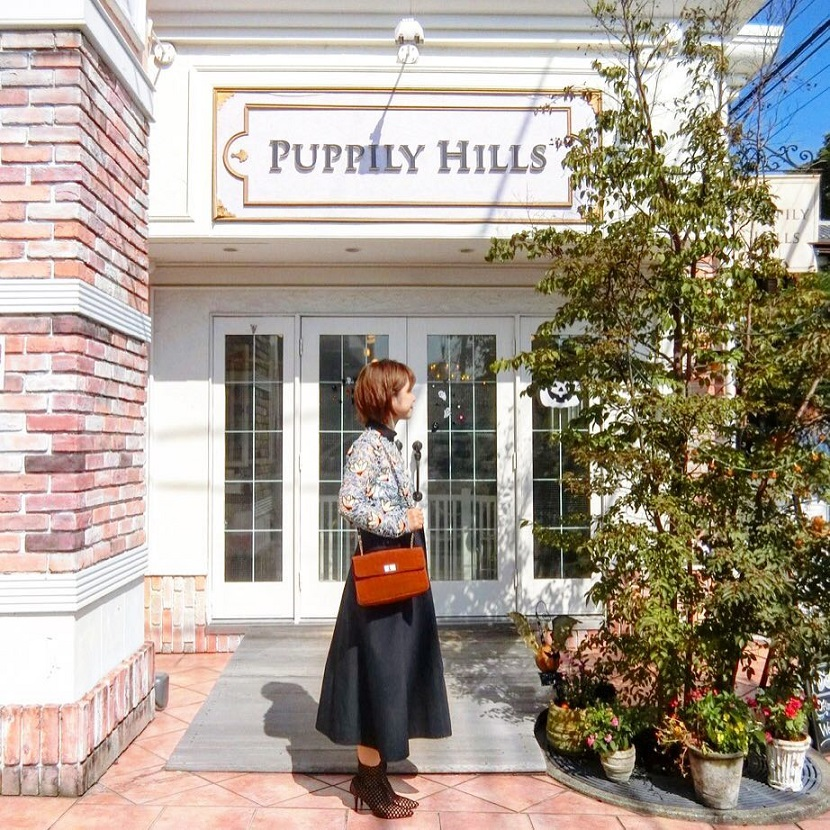 Image result for Puppily Hills Tokyo