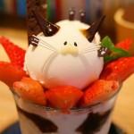 shima92jp_kotobanohaoto