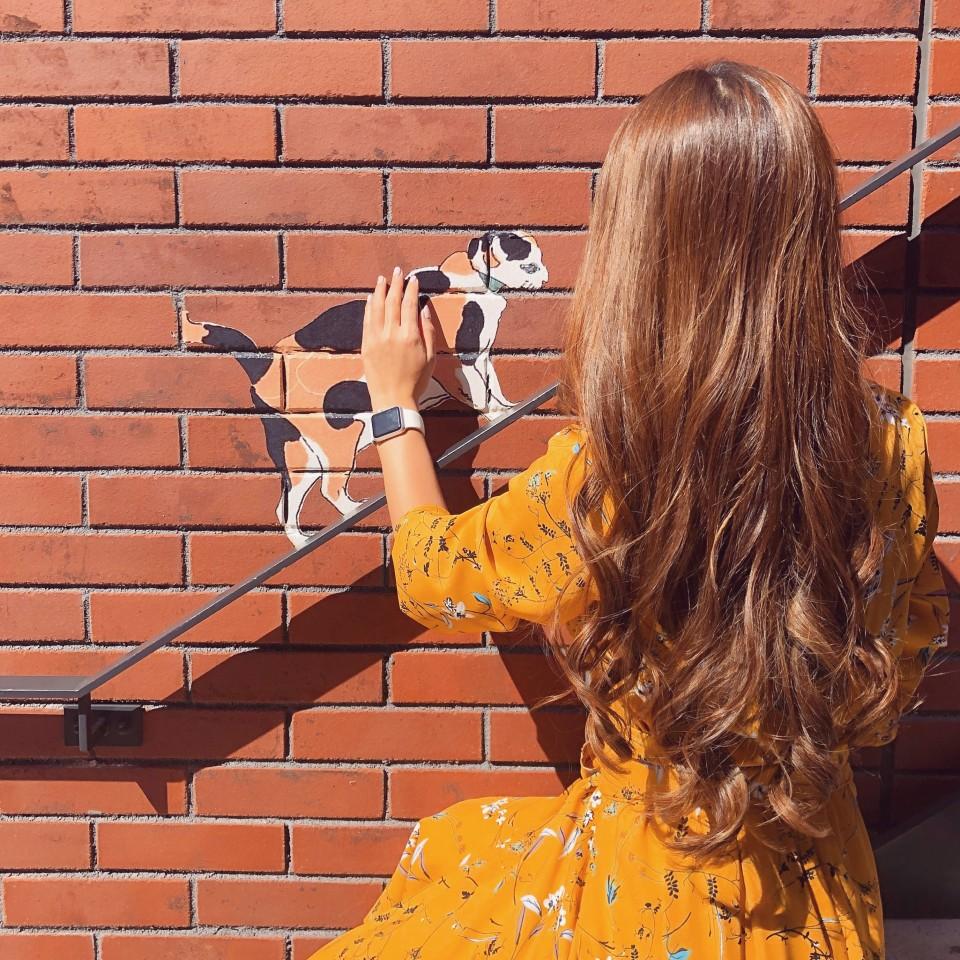 おしゃれな階段と手すりを上るネコ