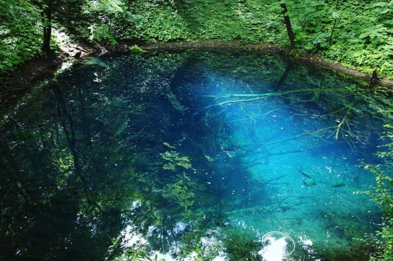 白神山地 十二湖 青池