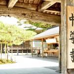 iw_chusonji_yukari_fuse