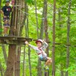 forestadventurehakone