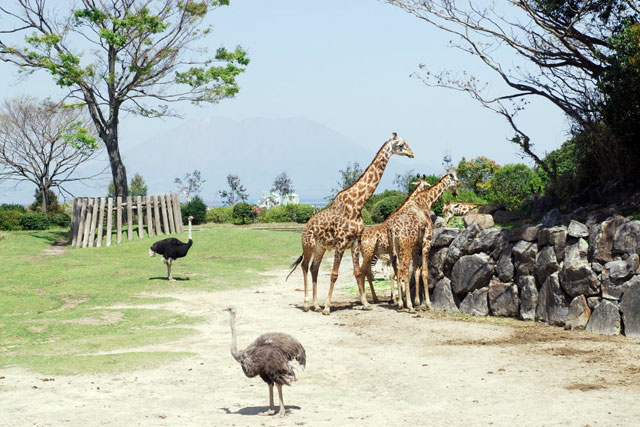 平川動物公園