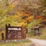 karuizawayachonomori
