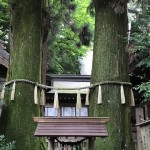 takachihojinjya