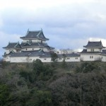 wakayamazyo
