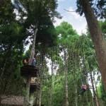 forestadventureask