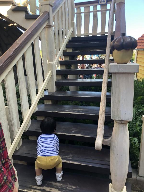 チップとデールのツリーハウス 1歳