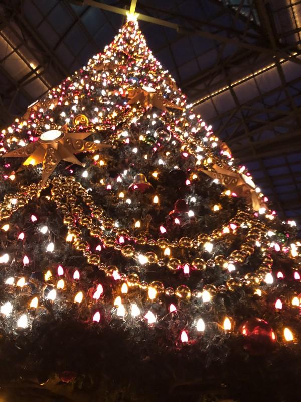 ディズニーランド クリスマスツリー