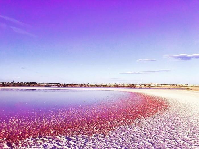 laguna rosa(ラグーナロサ)