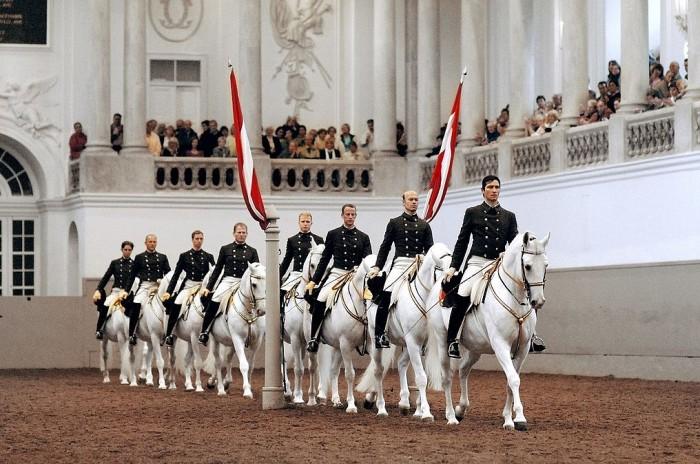 Spanische Hofreitschule(スペイン式乗馬学校)