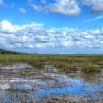 17_EvergladesNationalPark-e1573403052738