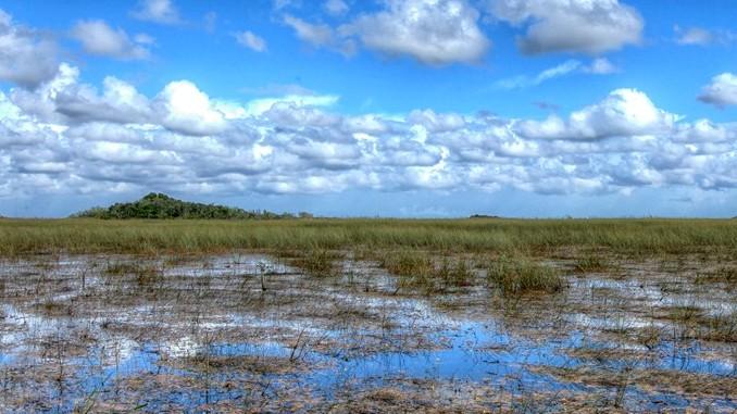 Everglades National Park(エバーグレーズ国立公園)
