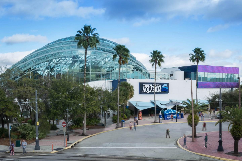 The Florida Aquarium(フロリダ水族館)