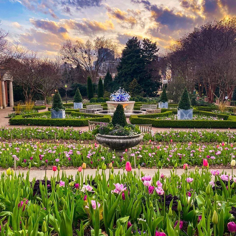 Atlanta Botanical Garden(アトランタボタニカルガーデン)
