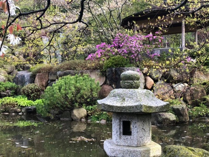Anderson Japanese Gardens(アンダーソン日本庭園)
