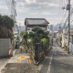 a_hitotsuyanagi_fujimi