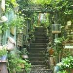 herbalhouse