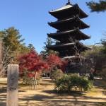 takyoshida1_niwa