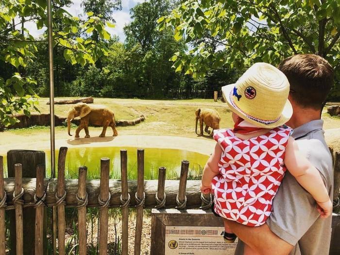 Birmingham Zoo(バーミンガムズー)