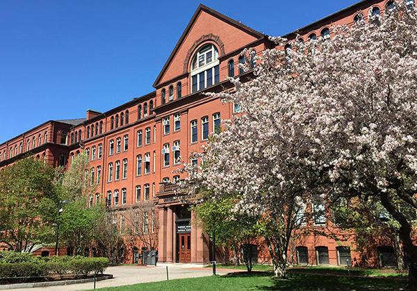 The Harvard Museum of Natural History(ハーバード大学自然史博物館)