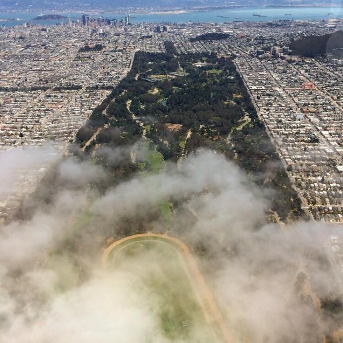 Golden Gate Park(ゴールデン・ゲート・パーク)