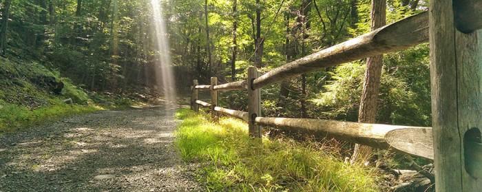 Darlington County Park(ダーリントン郡立公園)