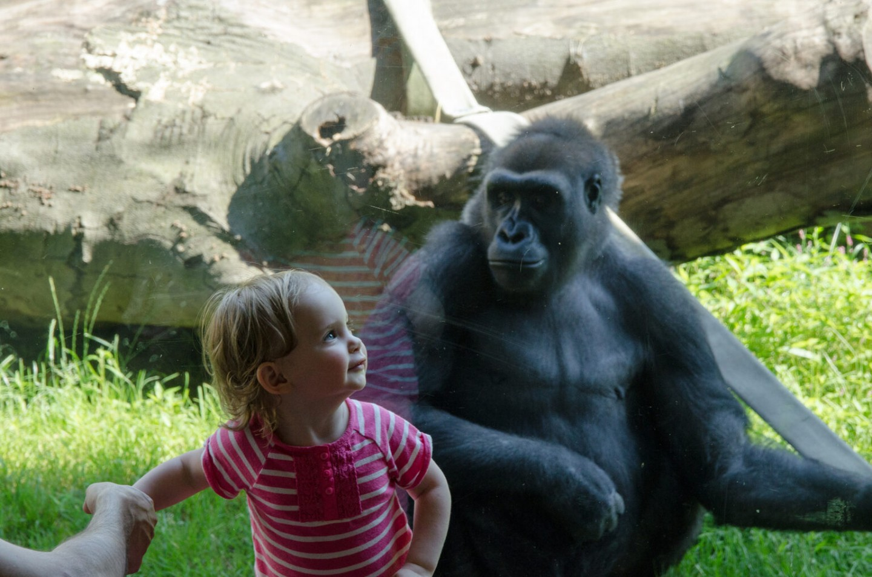 Philadelphia Zoo(フィラデルフィア動物園)